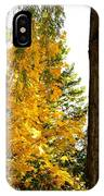 Country Color 19 IPhone Case