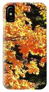 Country Color 26 IPhone Case