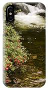 County Kerry, Ireland Fuchsia Bush IPhone Case