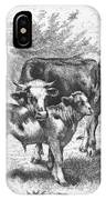 Cow And Calf IPhone Case