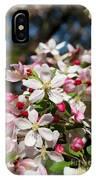 Crabapple Tree Flower IPhone Case