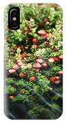 Cranberry Bog IPhone Case