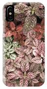 Creative Hues Of Mother Nature IPhone Case