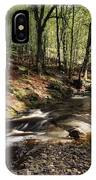 Creek In Woods, Cloughleagh, County IPhone Case
