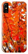 Crepe Myrtle Leaves In Autumn IPhone Case