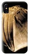 Crinoid Fossil IPhone Case