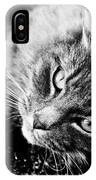 Cuddly Cat IPhone Case