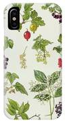Currants And Berries IPhone Case