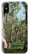 Cypress Trees And Water Hyacinth In Lake Martin IPhone Case