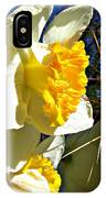 Daffodil And Cactus IPhone Case