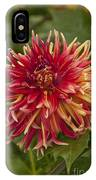 Dahlia In Its Prime IPhone Case