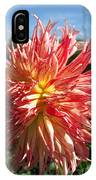 Dahlia Named Misty Explosion IPhone Case