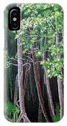 Daintree Forest At Twilight IPhone Case