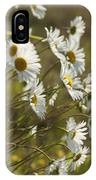 Daisies Blowin In The Wind IPhone Case