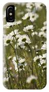 Daisy Fields Forever - Alabama Wildflowers IPhone Case