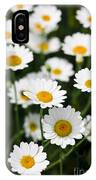 Daisy In A Field IPhone Case