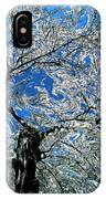 Dali Spring 5 IPhone Case