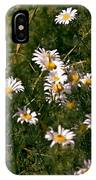 Dancing In The Field IPhone Case