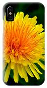 Dandy Among Daisies IPhone Case