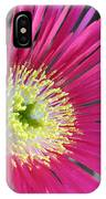 Dazzling Daisy IPhone Case