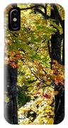 Dazzling Days Of Autumn IPhone Case