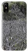 Dead Tree Garden IPhone Case