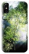 Deciduous Wood, Killarney National IPhone Case