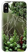 Decorated Bush Quogue Wildlife Preserve IPhone Case