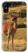 Deer On Mountain 2 IPhone Case