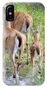 Deer Running In Stream IPhone Case