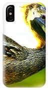 Deerfield Pelican IPhone Case