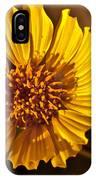 Desert Dandelion IPhone Case