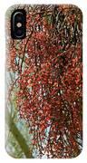 Desert Mistletoe Berries IPhone Case