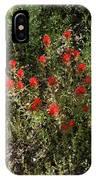 Desert Paint Brush IPhone Case