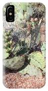 Desert's Collection Of Dried Flowers 3 IPhone Case