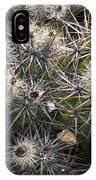 Devil's Club Cactus (gousonia Invicta) IPhone Case