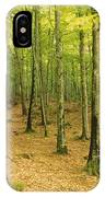 Devils Glen Woods, County Wicklow IPhone Case
