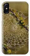 Dew Highlights An Orb-weaver Spiders IPhone Case