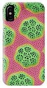 Diatom Cell Wall, Sem IPhone Case
