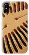 Diatom Frustule, Sem IPhone Case
