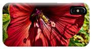 Dinner Plate Hibiscus IPhone Case