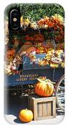 Disneyland Halloween 2 IPhone Case