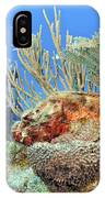 Diver Looks At Scorpionfish IPhone Case