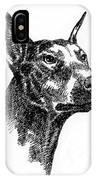 Doberman-pincher-portrait IPhone Case
