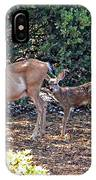 Doe And Twin Fawns IPhone Case