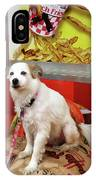 Dog At Carnival IPhone Case