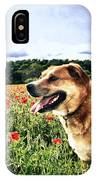 Dog In The Poppy Field IPhone Case
