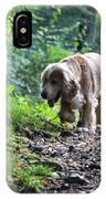 Dog Walking IPhone Case