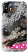 Doggone Cute IPhone Case