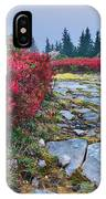 Dolly Sods Wilderness IPhone Case